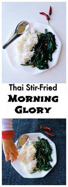 Love how Thai morning glory, aka water spinach, is so easy to make and so full of umami flavor from Thai yellow bean paste plus a spicy zing from Thai chili peppers! Easy week night veggies don't get better than this! | thai-foodie.com