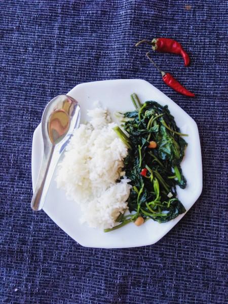 Stir-Fried Morning Glory Recipe